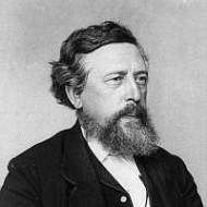 Bild 022: Wilhelm Liebknecht, Mitbegründer der SDAP [Archiv der Sozialen Demokratie]